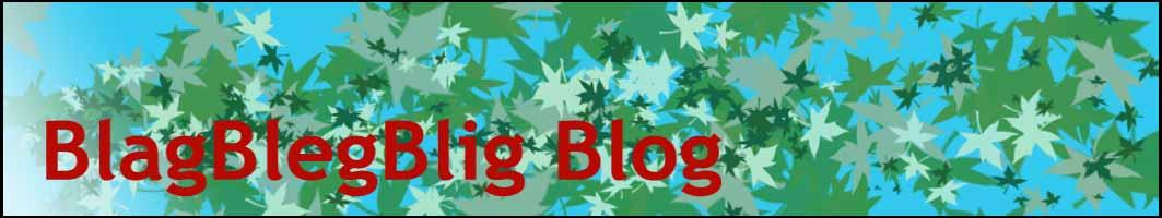 Blag Bleg Blig Blog