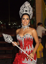Alexis Anel Mendoza Aburto, Señorita Turismo Misantla 2009