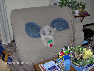 Nisie on the Couch