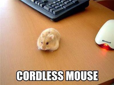 Cordless mouse stills