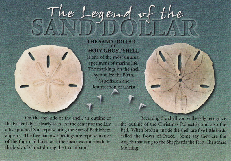 Agile image inside legend of the sand dollar printable