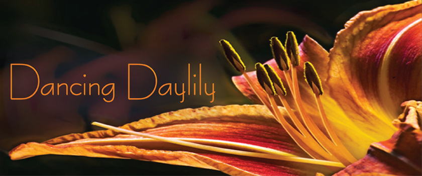 Dancing Daylily