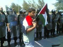 سنضحي من اجلك يافلسطين