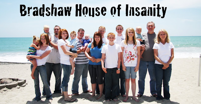 Bradshaw House of Insanity