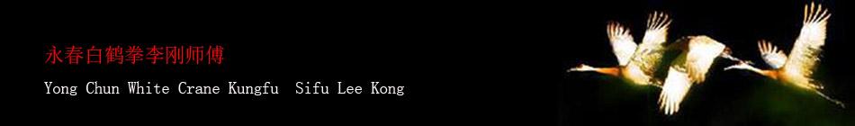 永春白鹤拳  White Crane Yong Chun Kung Fu