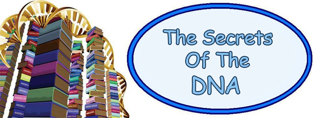 The Secrets Of The DNA