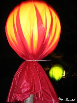 Giant Lollipops at the BioPark, Albuquerque, NM, 26-Dec-06