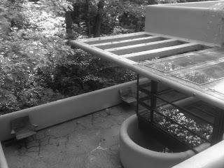 Falling Water terrace