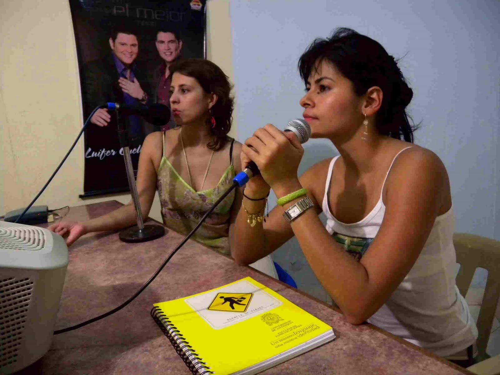 Proyecto agencia de viajes octubre 2010 - Agencia de viajes diana garzon ...