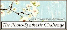 Past Designer for the Photo-Synthesis Challenge :)