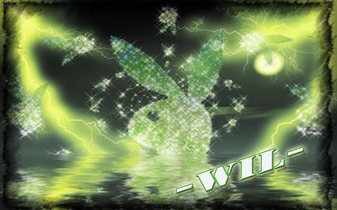 -wil- blog