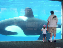 The Great Shamu.