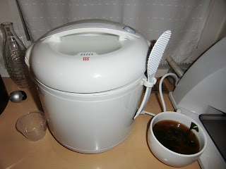 rice cooker (onemorehandbag)