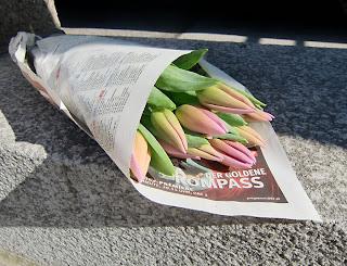 tulips (onemorehandbag)