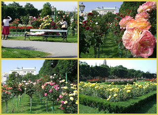 Volksgarten in Bloom (onemorehandbag)