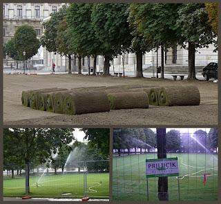 roll on the grass (onemorehandbag)