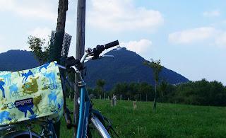 cycling (onemorehandbag)