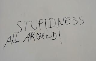 stupidness (onemorehandbag)