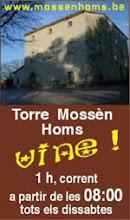 Mossen Homs