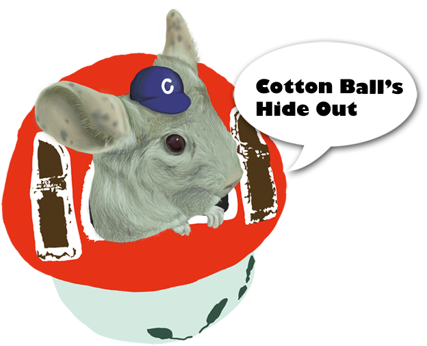 Cotton Ball's Hideout