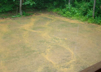 Rainfall creates channels on seeded lawn