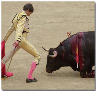 испанская коррида - бык не имеет шансов на победу...