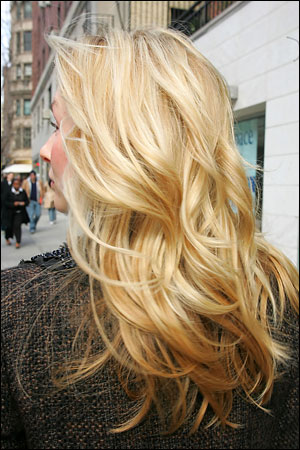 Alfredo Argyle Salon blonde hair color