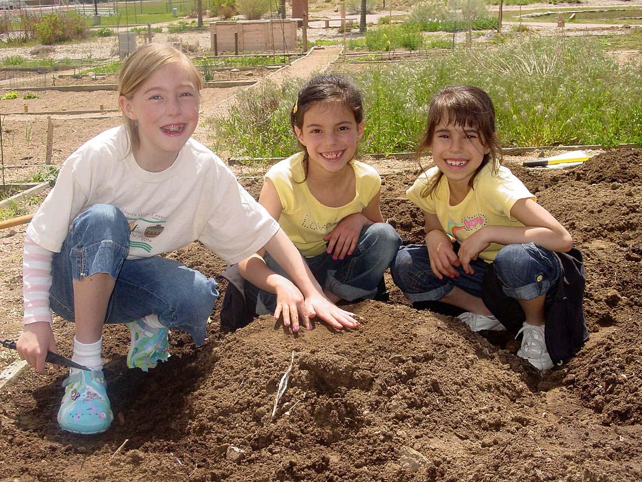 germandolls: Planting a Three Sisters Garden