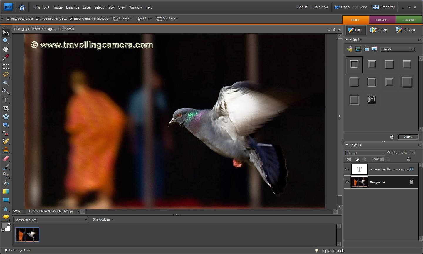 Editing Text in Photoshop Elements 10 - dummies