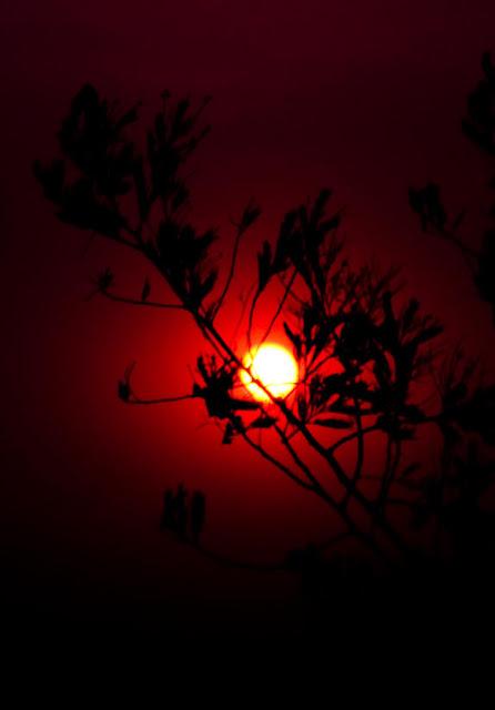 MUKTESHWAR & NAINITAAL TRIP: Sunset @ Mukteshwar, Uttranchal, INDIA