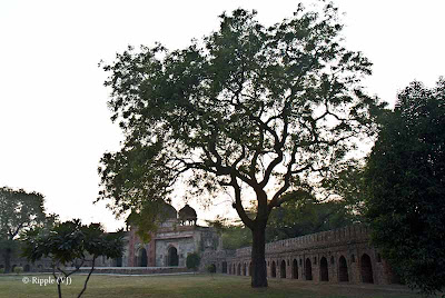 Posted by Ripple (VJ) : Humayun's Tomb, Delhi : Other Tomb in the same Campus...