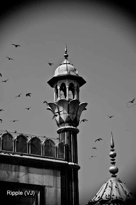 Posted by Ripple (VJ) : Delhi 6 - Jama Masjid : Time Seems to have Forgotten this part of Delhi. It still feels like the early 20th Century here.