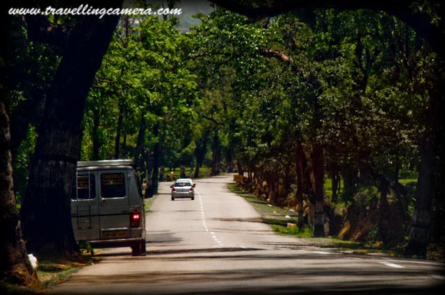 PALAMPUR to BAIJNATH :: Travelling-Camera sharing most beautiful stretch of Road Journey in Himachal Pradesh: Posted by VJ SHARMA on www.travellingcamera.com : Baijnath is located at average elevation of 1320 metres (4340 feet). It is a small township in the Dhauladhar range of western Himalayas and 18 kilometers from Palampur in the Kangra District of Himachal Pradesh(INDIA). Here is the next series of Photographs from Road Journey in Himachal Pradesh. Check out PART-1, PART-2, PART-3, PART-4 and PART-5 of this journey before proceeding further...Travelling Camera struggling in a moving car to capture the wonderful roads between Palampur and Baijnath..Many times I suggest a drive on this road to my friends who plan to visit Dharmshala or Palampur.. I love this road because of its richness in terms of natural beauty around this having tea gardens and pine trees in most of the stretch...Wonderful road... I have been to Baijnath many times and always seen this road is best possible conditions... There is Cant area on the way to Baijnath from Palampur and that may be a reason for good maintainance of this road... Its been oberserved that roads and areas around indian military camps are very well maintained... Similar is the case on the road from Dharmshala to Mcleodjang...Smooth road in Kangra Valley...This photograph has been shot after having lunch at Taragarh Palace which is built during 1930 by a very youngruler of Bahawalpur, Nawab Sadiq Mohammed Khan Bahadur. It was named as Al Hilal (literally the Land of the crescent moon) and now called Taragarh after Maharani Tara Devi, of the princely state of Jammu and Kashmir who became its subsequent owner. Roads in Palampur town with Deodar boundaries... Palampur town (1220 meters) is situated in a valley priding itself with tea gardens and snow covered hills of dhauladhar mountain ranges. The place enjoys a year round pleasant climate and the pine scented air, which are uncompararble properties of Palampur. Palampur is really very rich in terms of natural resources: Best Climate during most of the part of an year, very good power and water supply, very good living standards as compared to other main towns in Himachal Pradehs, Most of the modern facilities are avaialable, Good connectivity from oethr states and main cities n so many other things I can't explain here... I dream of a sweet home here...Beautiful hills near Palampur... Drive on amazing roads in this region have various views of Dhauladhar mountain range...
