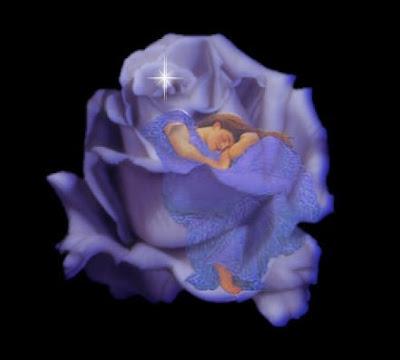 LOS RECUERDO DEL AYER - Página 2 Durmiendo+en+una+rosa