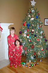 2009 Christmas Tree decoration picture