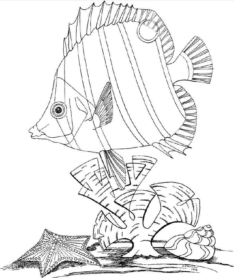 underwater world coloring pages - Underwater Coloring Pages