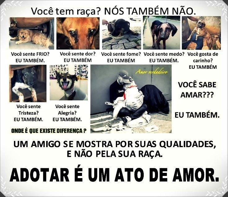 RESPEITE OS ANIMAIS!!!!