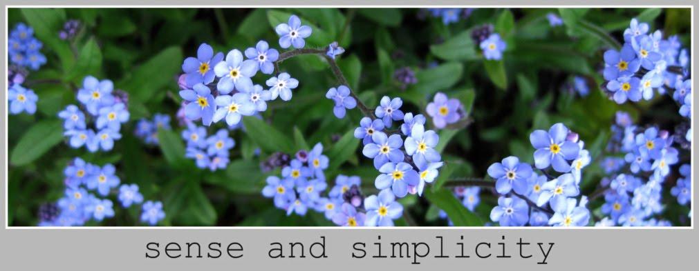 Sense and Simplicity