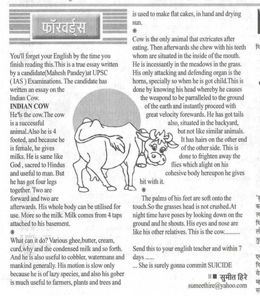 essay on cow in english the cow essay by ias candidate the fun learning