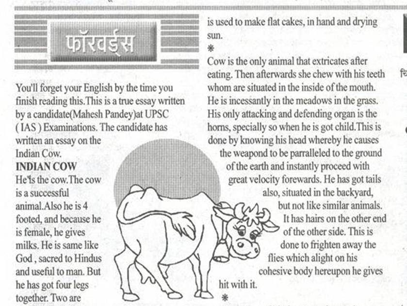 type of teachers essay The Cow Essay for Class 1 – School essay on Cow for Grade 1-4