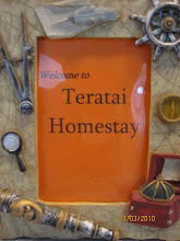 Welcome to Teratai Homestay
