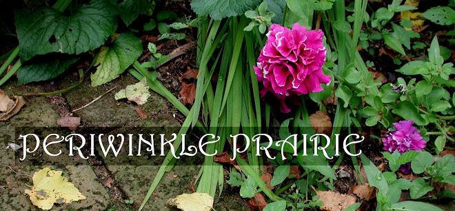 Periwinkle Prairie