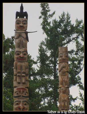totem poles as a spiritual form 28-12-2015 lophocereus schotti is native to the desert regions of mainland mexico and the baja california peninsula of mexico small populations also occur in the extre.