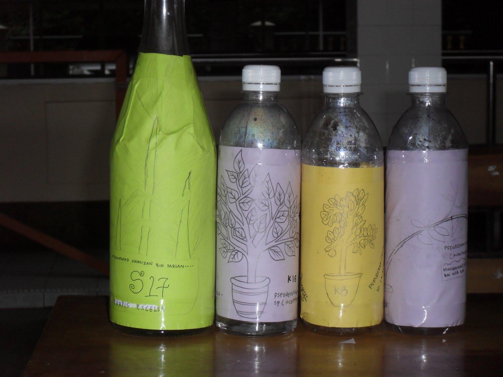rauf sedang melukis gambar pokok untuk ditampalkan di botol air yang
