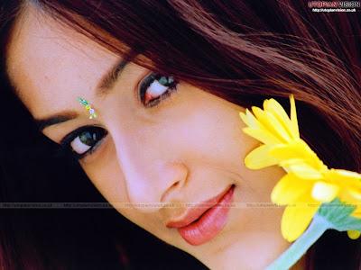 Actress Ileana Letest ho gallery