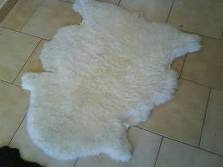 Vendo cojinillos de oveja