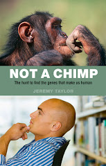 NOT A CHIMP
