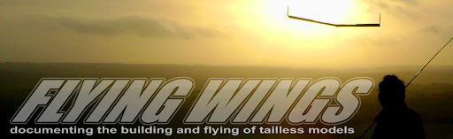 flying wings