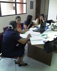 Talleres de Alineación Curricular Maunabo, Puerto Rico