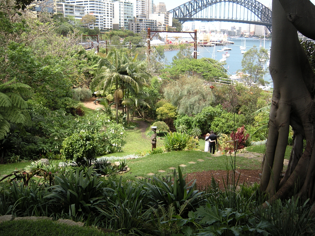 In Clark Park, Lavender Bay, What A Beautiful Setting For A Wedding